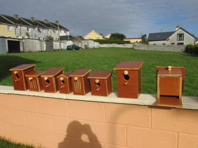 Bird and Butterfly Boxes
